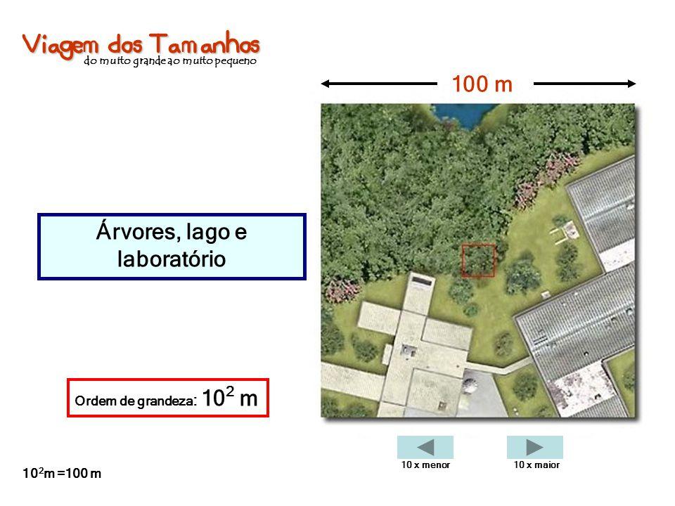 Viagem dos Tamanhos do muito grande ao muito pequeno Árvores, lago e laboratório 100 m Ordem de grandeza : 10 2 m 10 2 m =100 m 10 x menor10 x maior