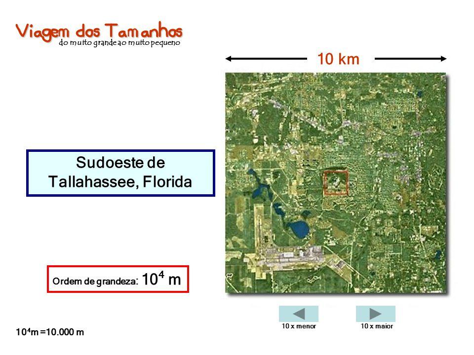 Viagem dos Tamanhos do muito grande ao muito pequeno Sudoeste de Tallahassee, Florida 10 km Ordem de grandeza : 10 4 m 10 4 m =10.000 m 10 x menor10 x
