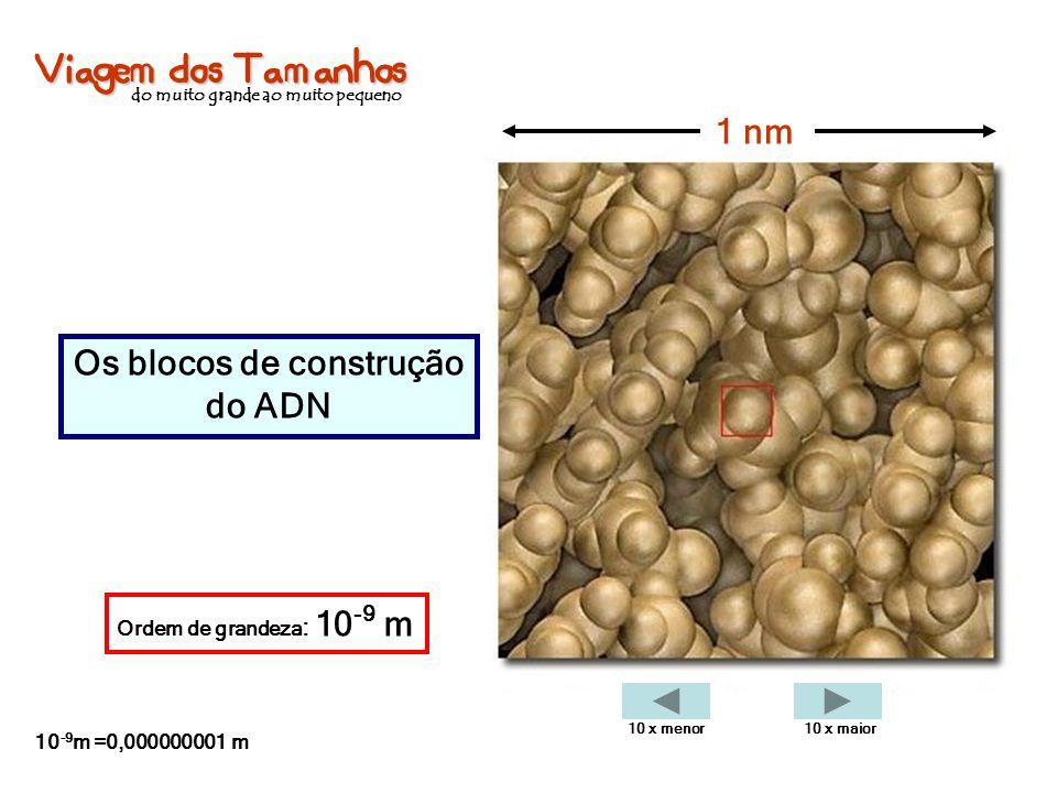 Viagem dos Tamanhos do muito grande ao muito pequeno Os blocos de construção do ADN 1 nm Ordem de grandeza : 10 -9 m 10 -9 m =0,000000001 m 10 x menor
