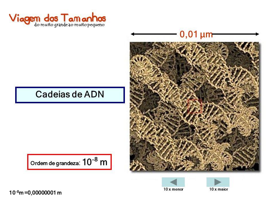 Viagem dos Tamanhos do muito grande ao muito pequeno Cadeias de ADN 0,01 µm Ordem de grandeza : 10 -8 m 10 -8 m =0,00000001 m 10 x menor10 x maior