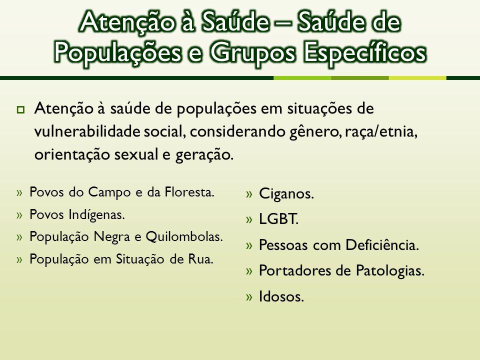  Atenção à saúde de populações em situações de vulnerabilidade social, considerando gênero, raça/etnia, orientação sexual e geração. » Povos do Campo