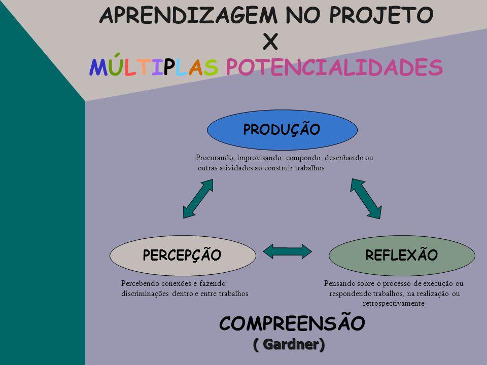 FERRAMENTAS EDUCACIONAIS NO PROJETO X MÚLTIPLAS POTENCIALIDADES Lingüística Lógico-matemática Musical Corporal Interpessoal Intrapessoal Naturalista E
