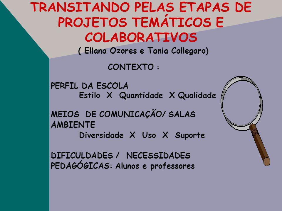VISÃO COMPARTILHADA EM PROJETOS ( Mihaly Csikzentmihalyi) ANSIEDADE ENFADO HABILIDADES