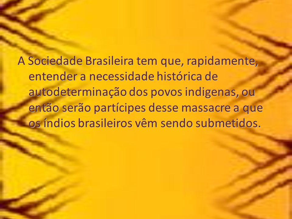 A Sociedade Brasileira tem que, rapidamente, entender a necessidade histórica de autodeterminação dos povos indigenas, ou então serão partícipes desse
