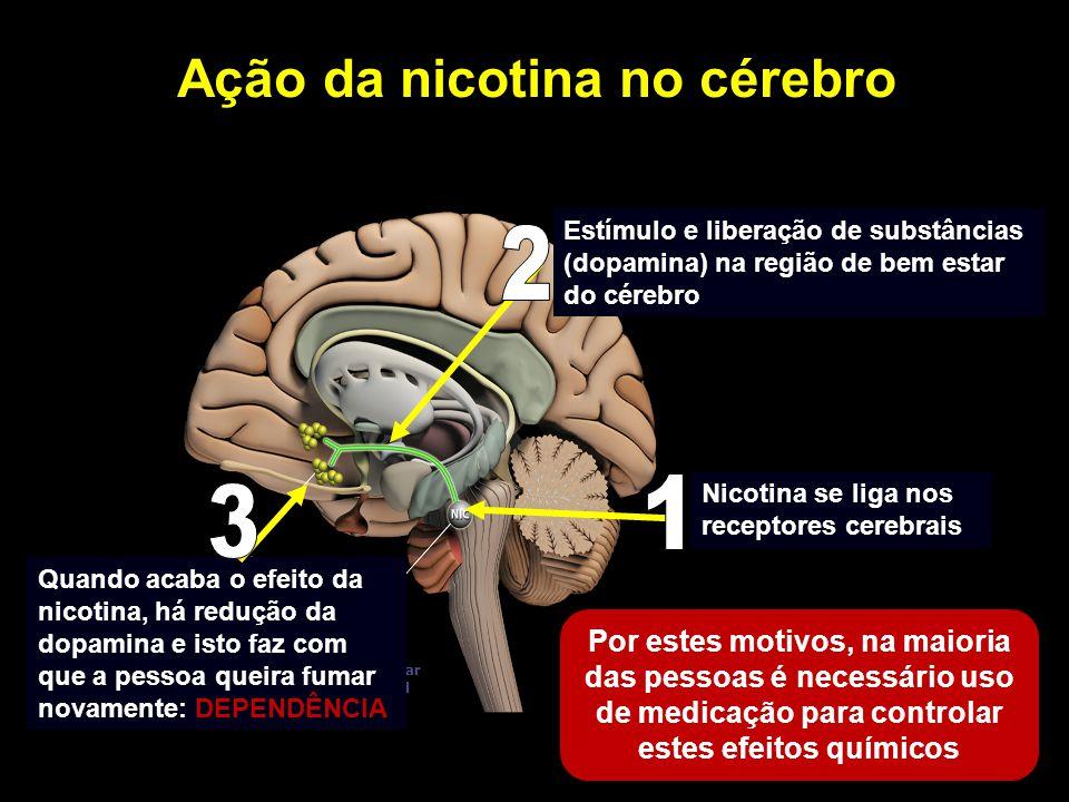 Nucleus accumbens (nAcc) Área tegmentar ventral (VTA) Nicotina Dopamin a Ação da nicotina no cérebro Nicotina se liga nos receptores cerebrais Estímul