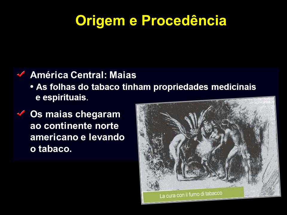 Origem e Procedência América Central: Maias As folhas do tabaco tinham propriedades medicinais e espirituais. Os maias chegaram ao continente norte am