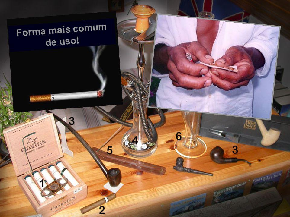 3ª Campanha Anti Tabagismo CentroCard História doTabaco Tabagismo Vício e Dependência Consequência do tabagismo Benefícios (parar de fumar) Dificuldade e como parar