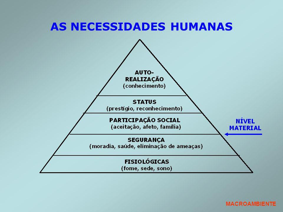 AS NECESSIDADES HUMANAS MACROAMBIENTE