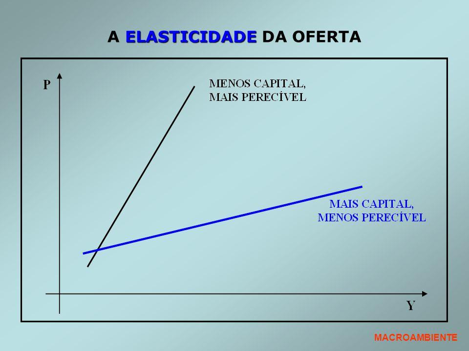 ELASTICIDADE A ELASTICIDADE DA OFERTA MACROAMBIENTE