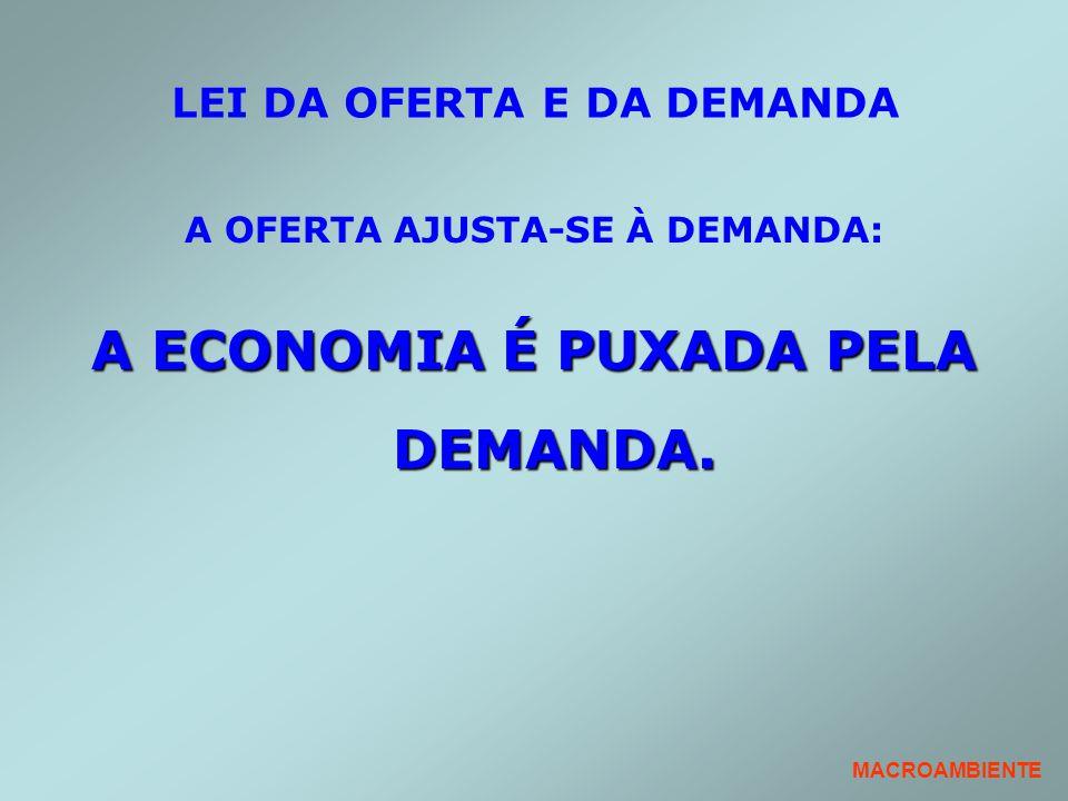 LEI DA OFERTA E DA DEMANDA A OFERTA AJUSTA-SE À DEMANDA: A ECONOMIA É PUXADA PELA DEMANDA. MACROAMBIENTE