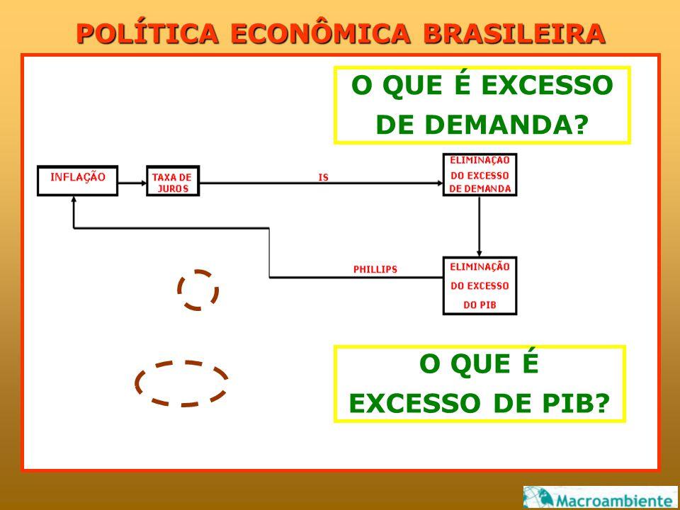 POLÍTICA ECONÔMICA BRASILEIRA O QUE É EXCESSO DE PIB O QUE É EXCESSO DE DEMANDA