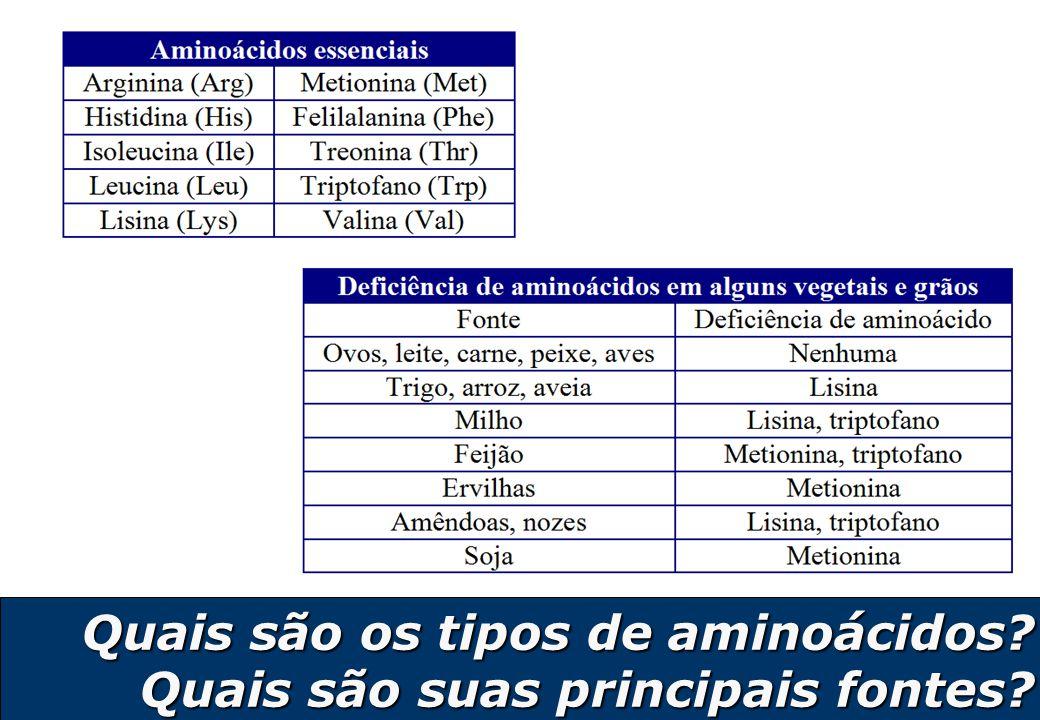 8 Qual a relação aminoácidos, peptídeos e proteínas.