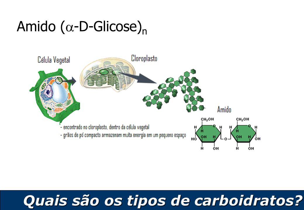 11 Amido (  -D-Glicose) n Quais são os tipos de carboidratos?