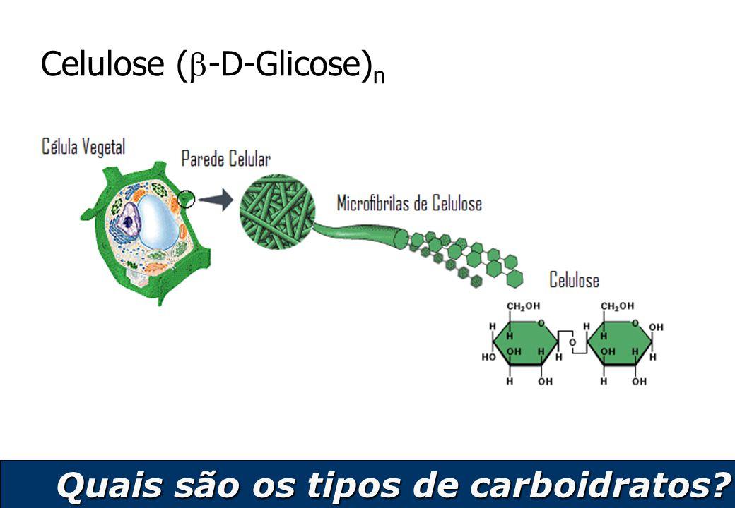 13 Celulose (  -D-Glicose) n Quais são os tipos de carboidratos?