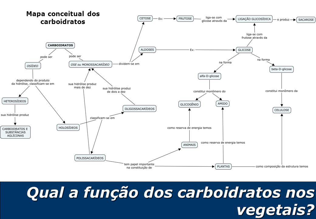17 Qual a função dos carboidratos nos vegetais? Mapa conceitual dos carboidratos