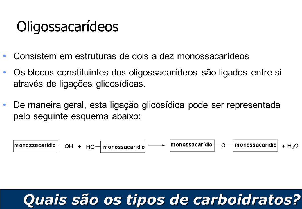 7 Oligossacarídeos Consistem em estruturas de dois a dez monossacarídeos Os blocos constituintes dos oligossacarídeos são ligados entre si através de