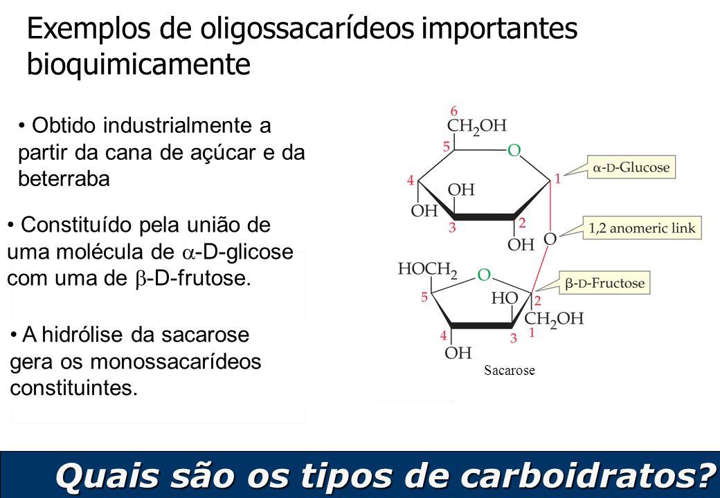 9 Exemplos de oligossacarídeos importantes bioquimicamente Sacarose Obtido industrialmente a partir da cana de açúcar e da beterraba Constituído pela