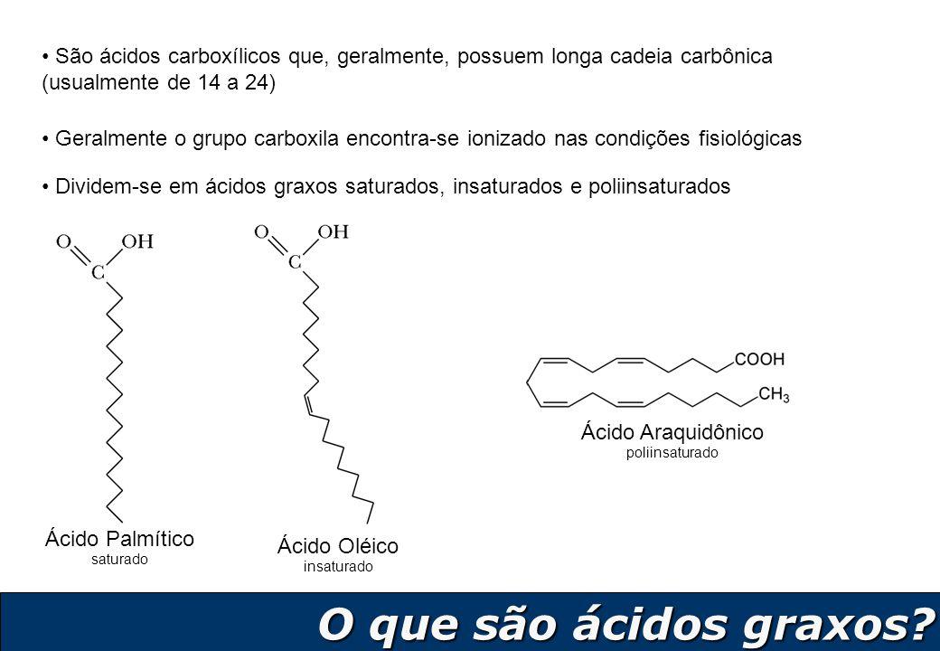 5 O que são ácidos graxos? O que são ácidos graxos? São ácidos carboxílicos que, geralmente, possuem longa cadeia carbônica (usualmente de 14 a 24) Di