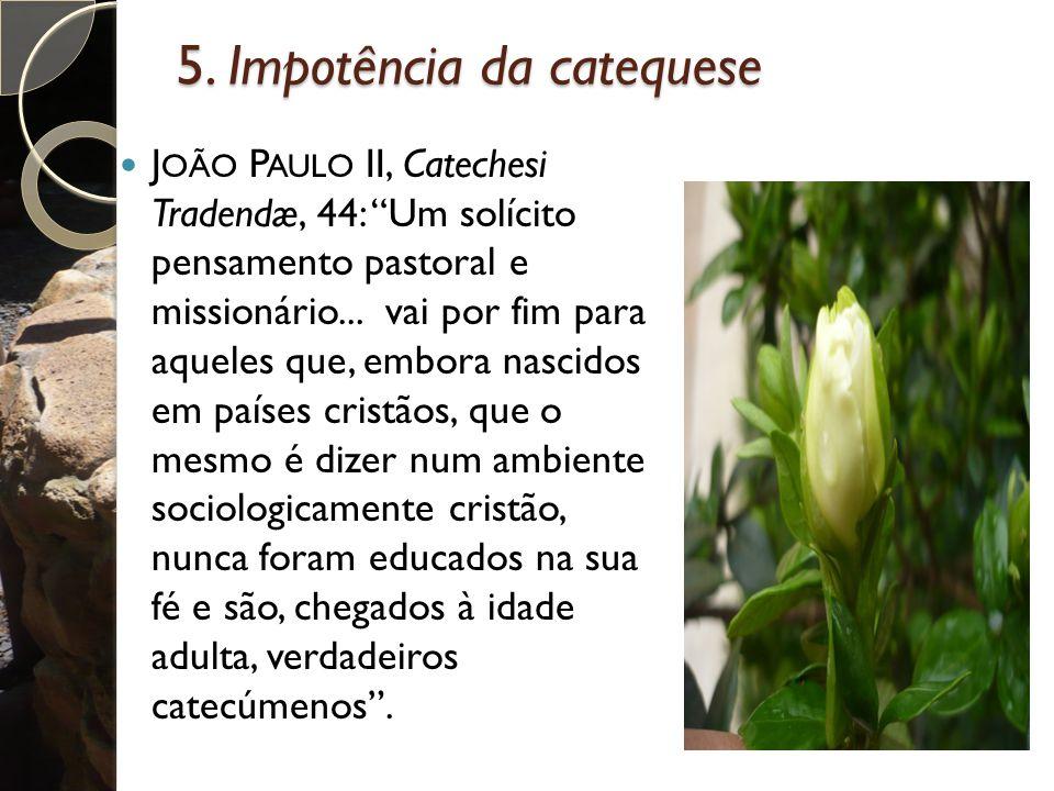 """5. Impotência da catequese J OÃO P AULO II, Catechesi Tradendæ, 44: """"Um solícito pensamento pastoral e missionário... vai por fim para aqueles que, em"""