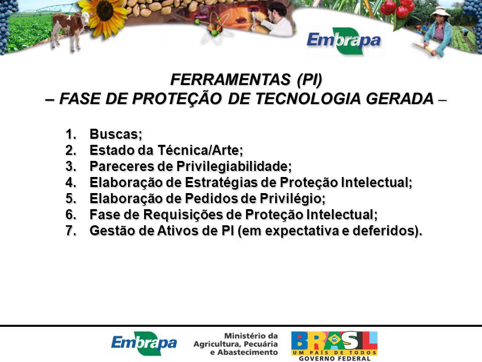 FERRAMENTAS (PI) – FASE DE PROTEÇÃO DE TECNOLOGIA GERADA – 1.Buscas; 2.Estado da Técnica/Arte; 3.Pareceres de Privilegiabilidade; 4.Elaboração de Estr