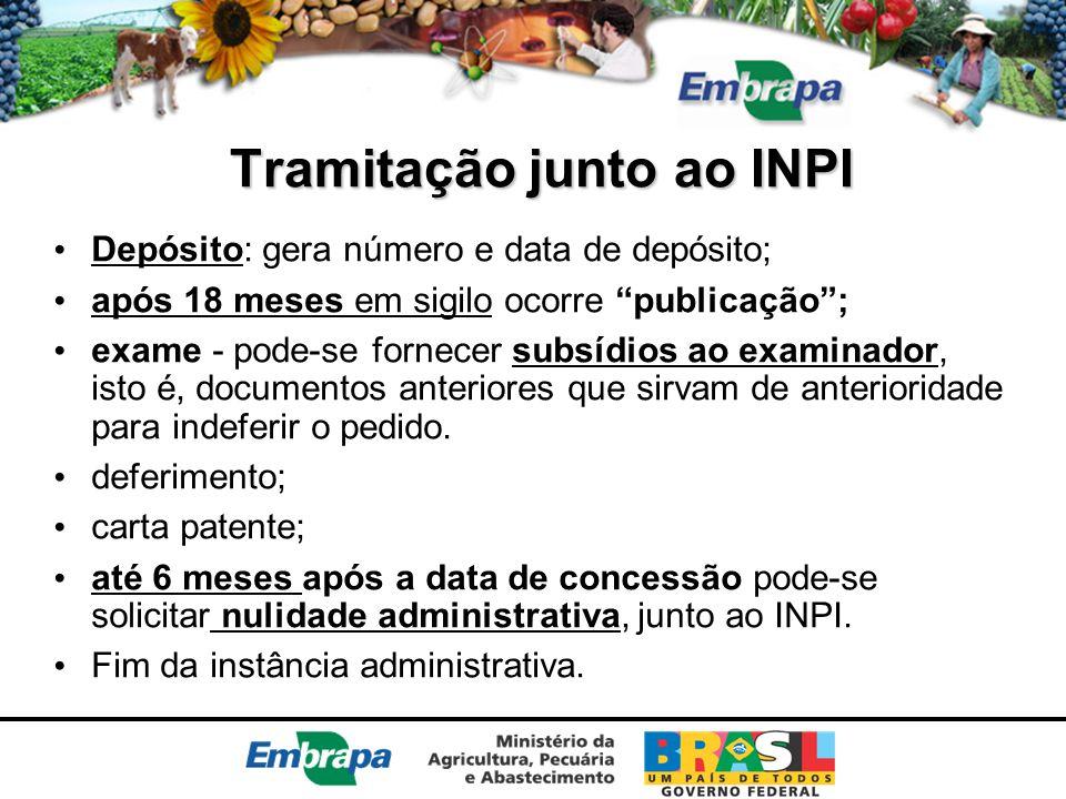 """Tramitação junto ao INPI Depósito: gera número e data de depósito; após 18 meses em sigilo ocorre """"publicação""""; exame - pode-se fornecer subsídios ao"""