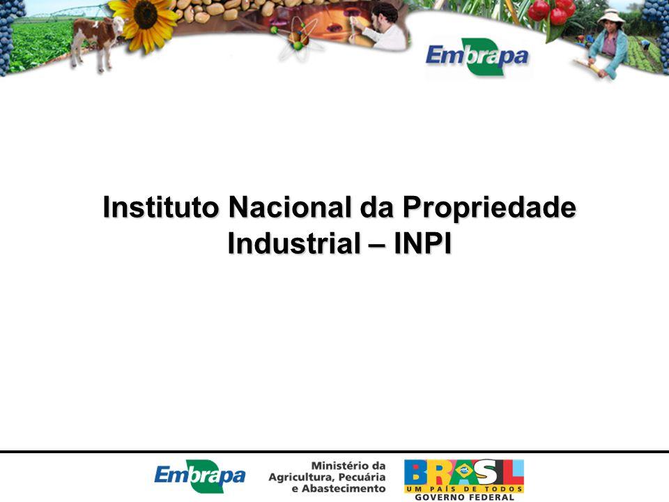 Instituto Nacional da Propriedade Industrial – INPI
