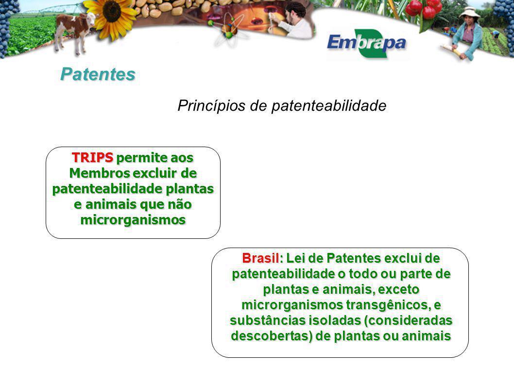 Patentes TRIPS permite aos Membros excluir de patenteabilidade plantas e animais que não microrganismos Brasil: Lei de Patentes exclui de patenteabili
