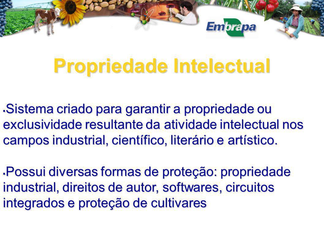 Propriedade Intelectual  Sistema criado para garantir a propriedade ou exclusividade resultante da atividade intelectual nos campos industrial, científico, literário e artístico.