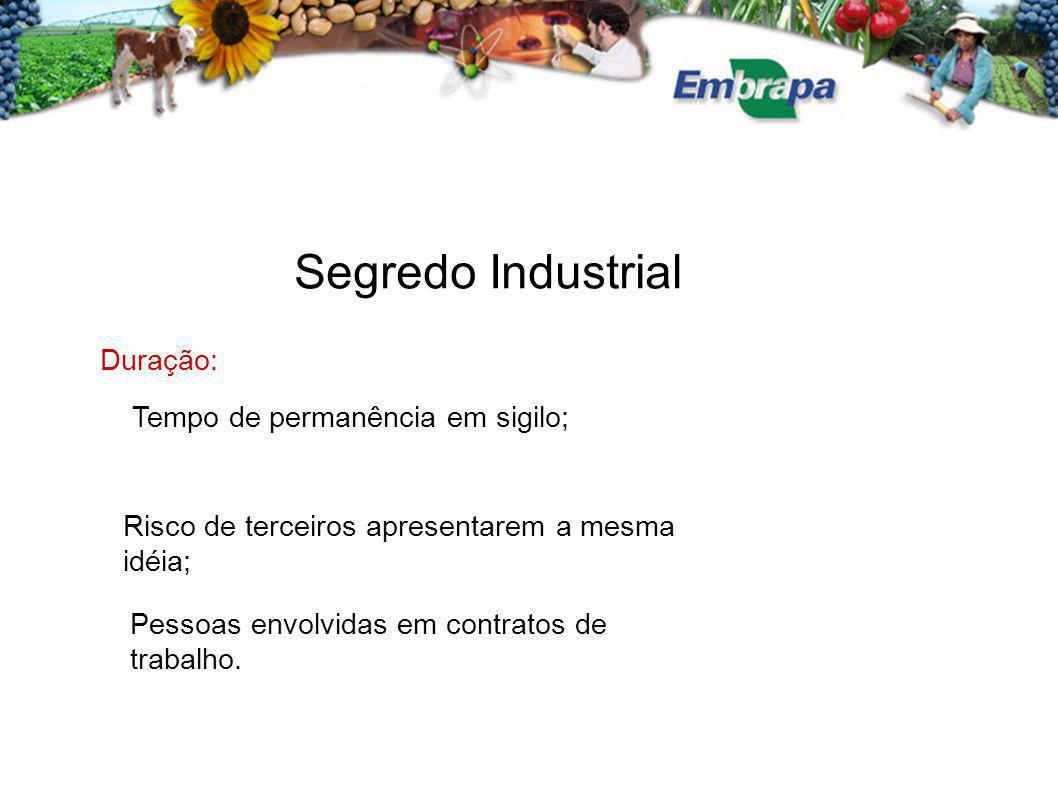 Segredo Industrial Duração: Tempo de permanência em sigilo; Risco de terceiros apresentarem a mesma idéia; Pessoas envolvidas em contratos de trabalho.