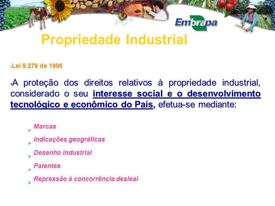  Lei 9.279 de 1996  A proteção dos direitos relativos à propriedade industrial, considerado o seu interesse social e o desenvolvimento tecnológico e econômico do País, efetua-se mediante:  Marcas  Indicações geográficas  Desenho industrial  Patentes  Repressão à concorrência desleal Propriedade Industrial