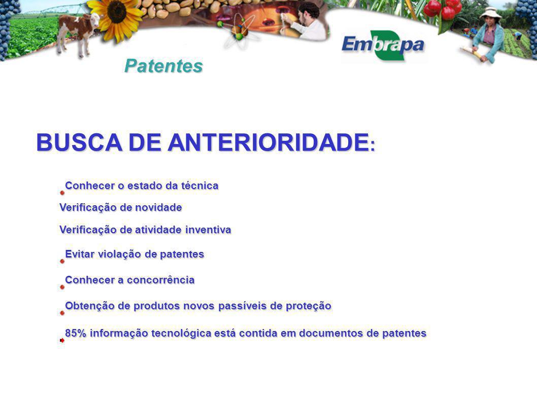 Patentes BUSCA DE ANTERIORIDADE : Conhecer o estado da técnica Verificação de novidade Verificação de atividade inventiva Evitar violação de patentes