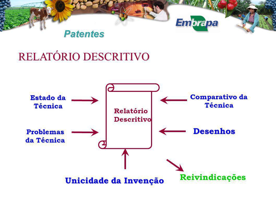 Patentes Comparativo da Técnica Estado da Técnica Problemas da Técnica Desenhos Unicidade da Invenção Reivindicações Relatório Descritivo RELATÓRIO DE