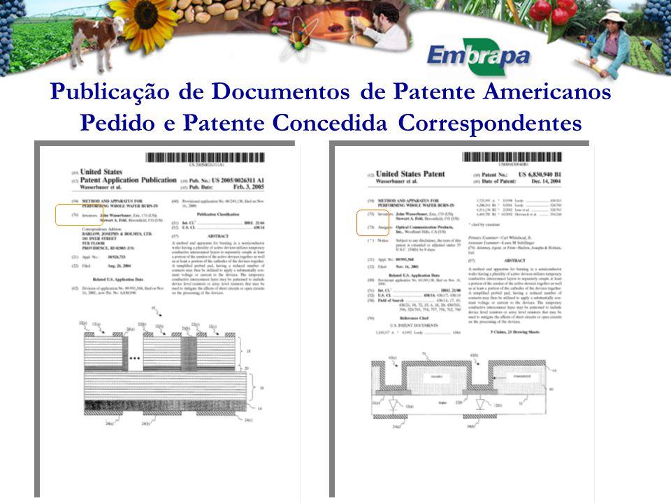 Publicação de Documentos de Patente Americanos Pedido e Patente Concedida Correspondentes