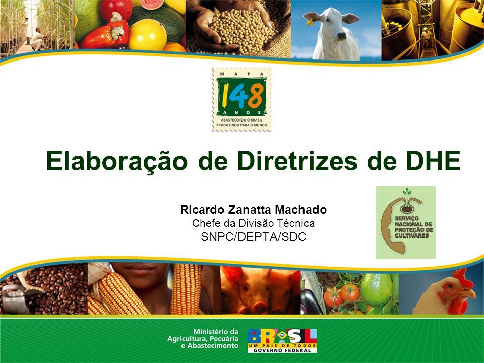 Elaboração de Diretrizes de DHE Ricardo Zanatta Machado Chefe da Divisão Técnica SNPC/DEPTA/SDC