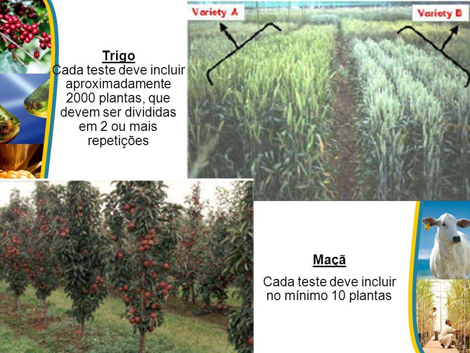 Trigo Cada teste deve incluir aproximadamente 2000 plantas, que devem ser divididas em 2 ou mais repetições Maçã Cada teste deve incluir no mínimo 10