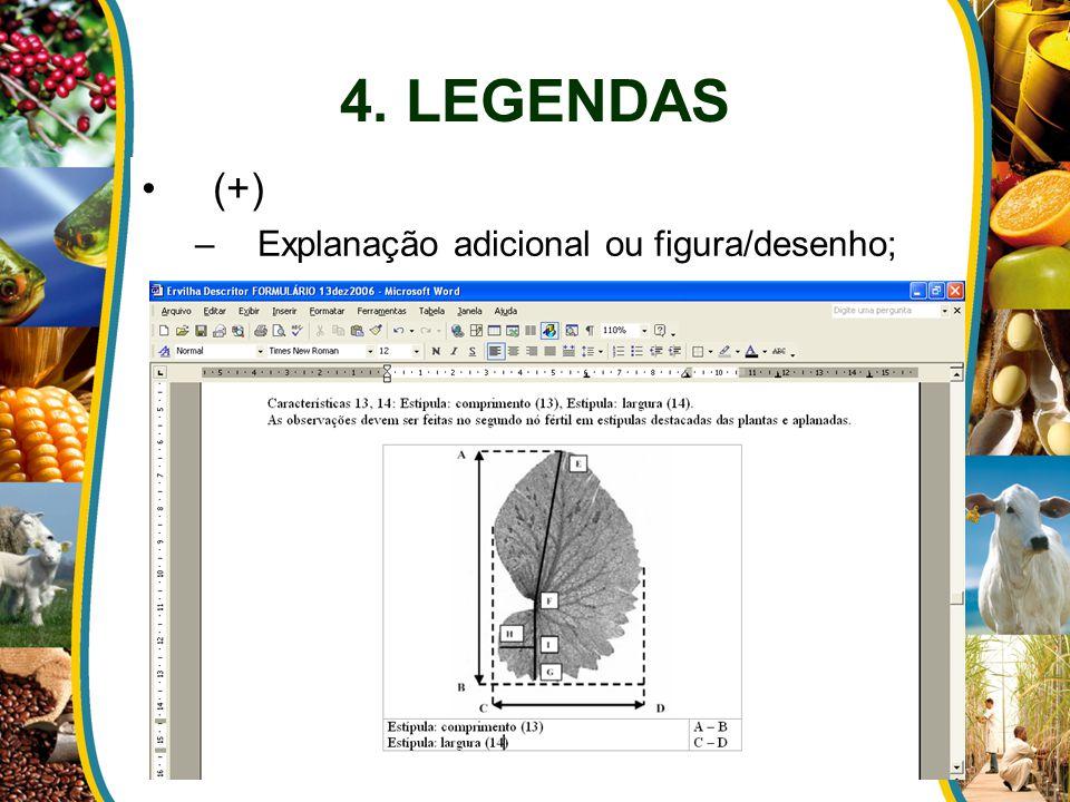 4. LEGENDAS (+) –Explanação adicional ou figura/desenho;