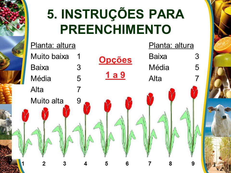 5. INSTRUÇÕES PARA PREENCHIMENTO Planta: altura Muito baixa1 Baixa3 Média5 Alta7 Muito alta9 Planta: altura Baixa3 Média5 Alta7 1 2 3 4 5 6 7 8 9 Opçõ