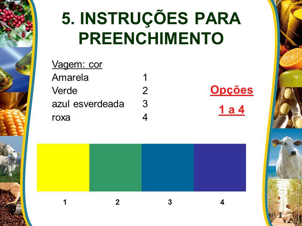 5. INSTRUÇÕES PARA PREENCHIMENTO Vagem: cor Amarela1 Verde2 azul esverdeada3 roxa 4 Opções 1 a 4 1 2 3 4