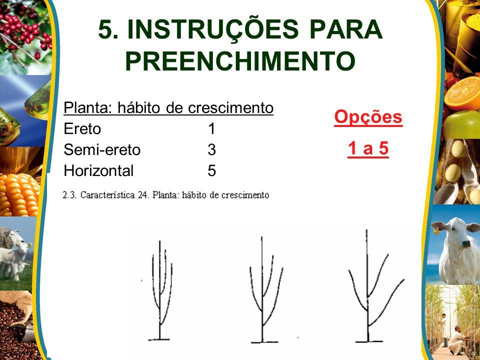 5. INSTRUÇÕES PARA PREENCHIMENTO Planta: hábito de crescimento Ereto1 Semi-ereto3 Horizontal5 Opções 1 a 5