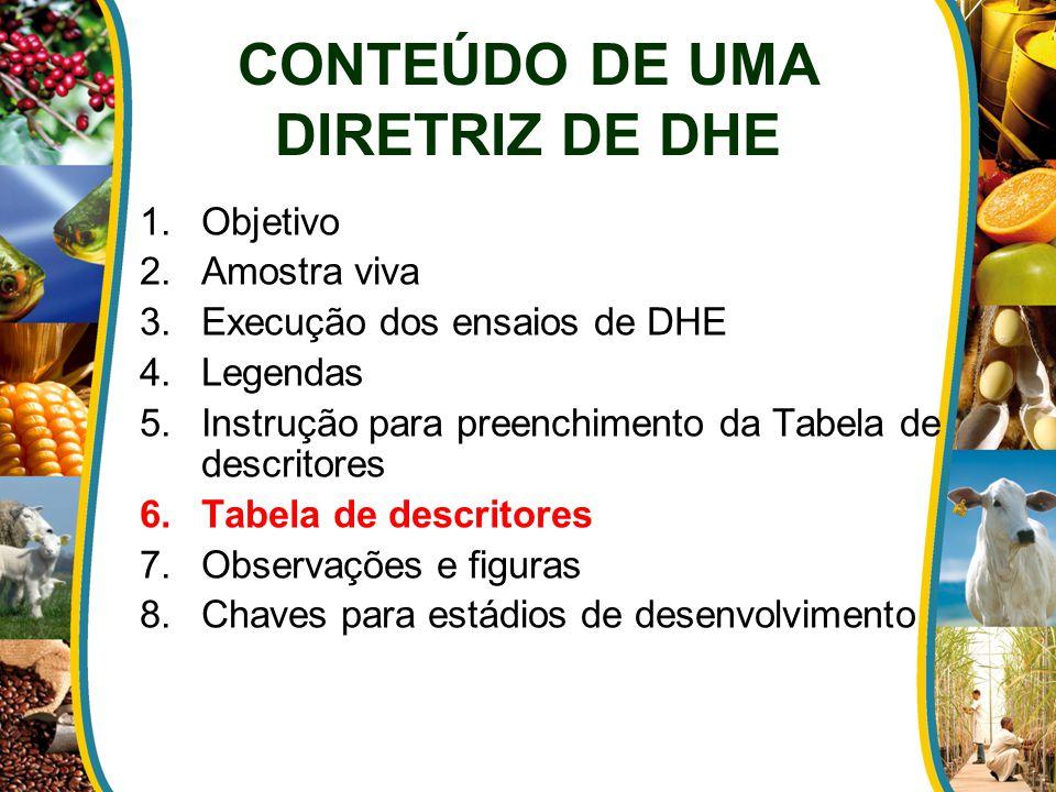 1.Objetivo 2.Amostra viva 3.Execução dos ensaios de DHE 4.Legendas 5.Instrução para preenchimento da Tabela de descritores 6.Tabela de descritores 7.O