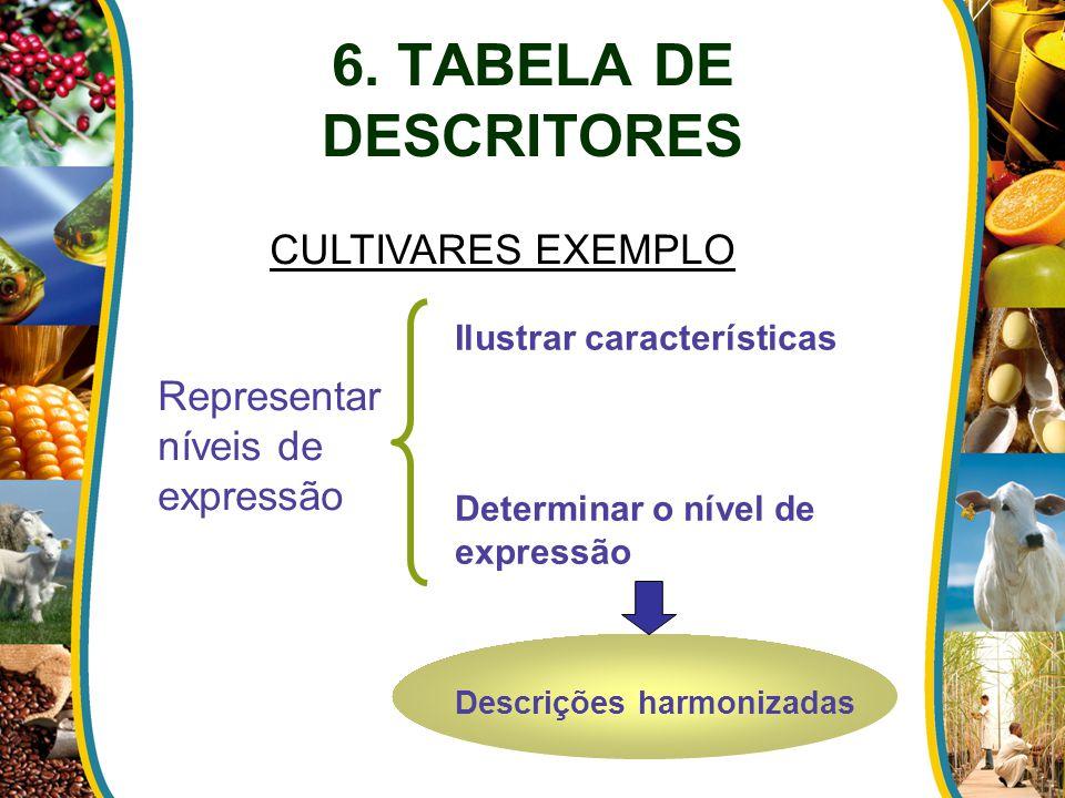 6. TABELA DE DESCRITORES Representar níveis de expressão Ilustrar características Determinar o nível de expressão Descrições harmonizadas CULTIVARES E