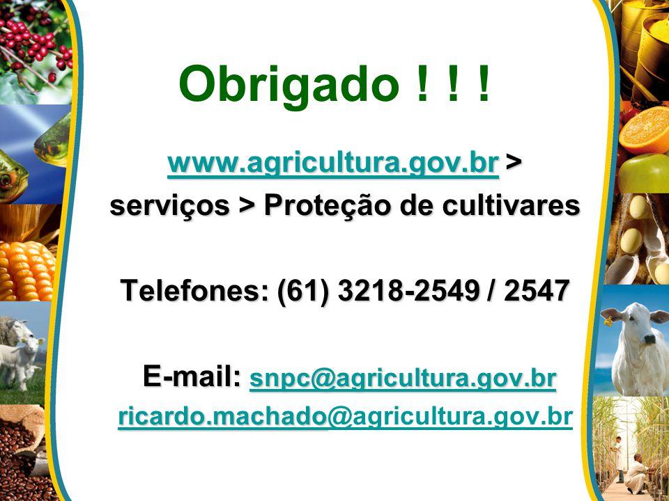 Obrigado ! ! ! www.agricultura.gov.brwww.agricultura.gov.br > www.agricultura.gov.br serviços > Proteção de cultivares Telefones: (61) 3218-2549 / 254
