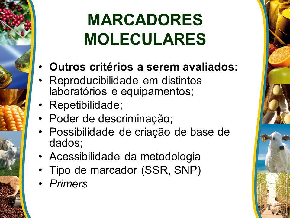 MARCADORES MOLECULARES Outros critérios a serem avaliados: Reproducibilidade em distintos laboratórios e equipamentos; Repetibilidade; Poder de descriminação; Possibilidade de criação de base de dados; Acessibilidade da metodologia Tipo de marcador (SSR, SNP) Primers