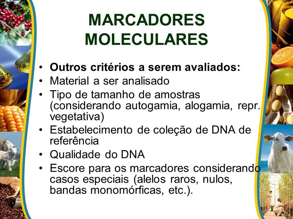 MARCADORES MOLECULARES Outros critérios a serem avaliados: Material a ser analisado Tipo de tamanho de amostras (considerando autogamia, alogamia, rep