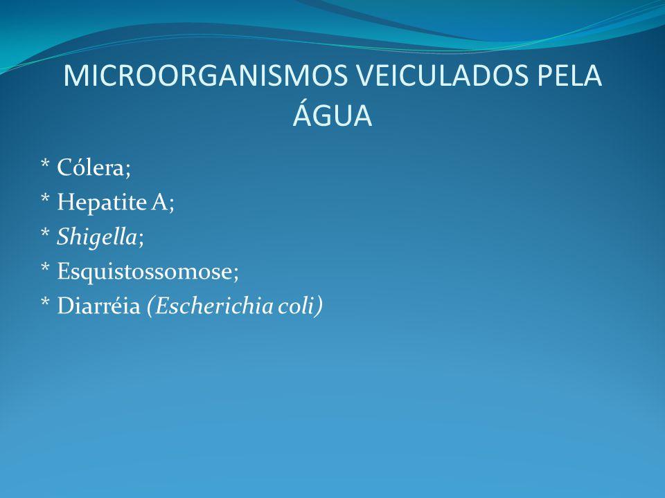 MICROORGANISMOS VEICULADOS PELA ÁGUA * Cólera; * Hepatite A; * Shigella; * Esquistossomose; * Diarréia (Escherichia coli)