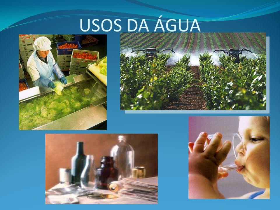 ÁGUA  IMPACTO Controle da poluição Qualidade da água disponível Quantidade de água disponível A importância de água para a manutenção da vida Conceito de poluição
