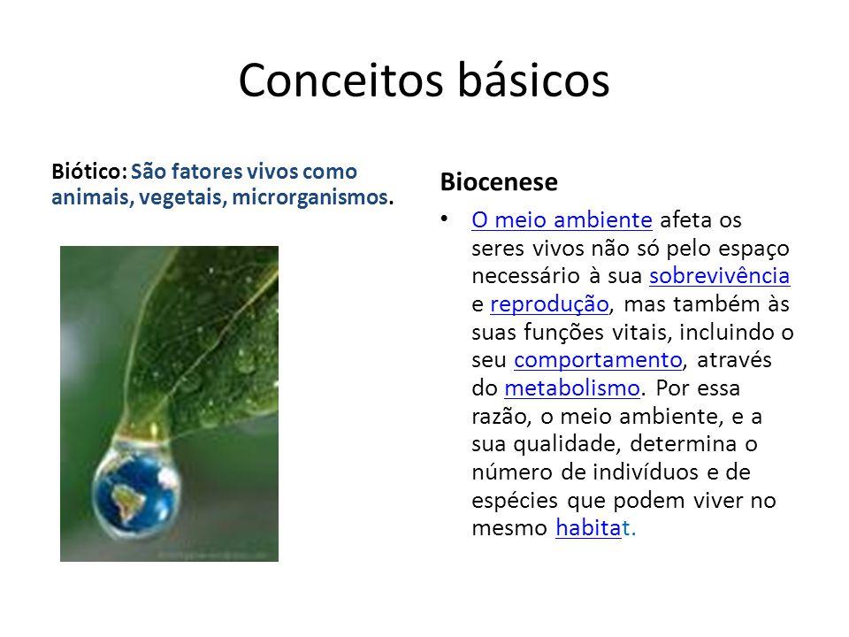 Conceitos básicos Biótico: São fatores vivos como animais, vegetais, microrganismos. Biocenese O meio ambiente afeta os seres vivos não só pelo espaço