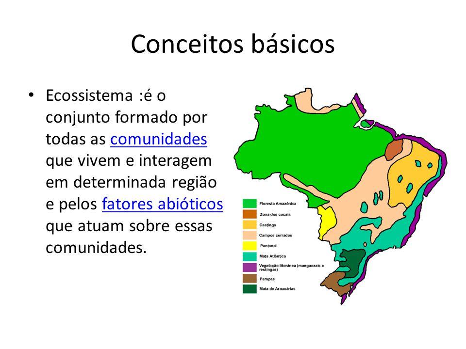 Conceitos básicos Ecossistema :é o conjunto formado por todas as comunidades que vivem e interagem em determinada região e pelos fatores abióticos que atuam sobre essas comunidades.comunidadesfatores abióticos