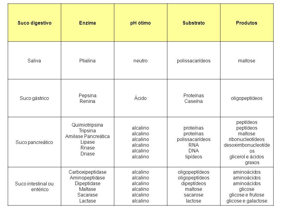 Suco digestivoEnzimapH ótimoSubstratoProdutos SalivaPtialinaneutropolissacarídeosmaltose Suco gástrico Pepsina Renina Ácido Proteínas Caseína oligopep