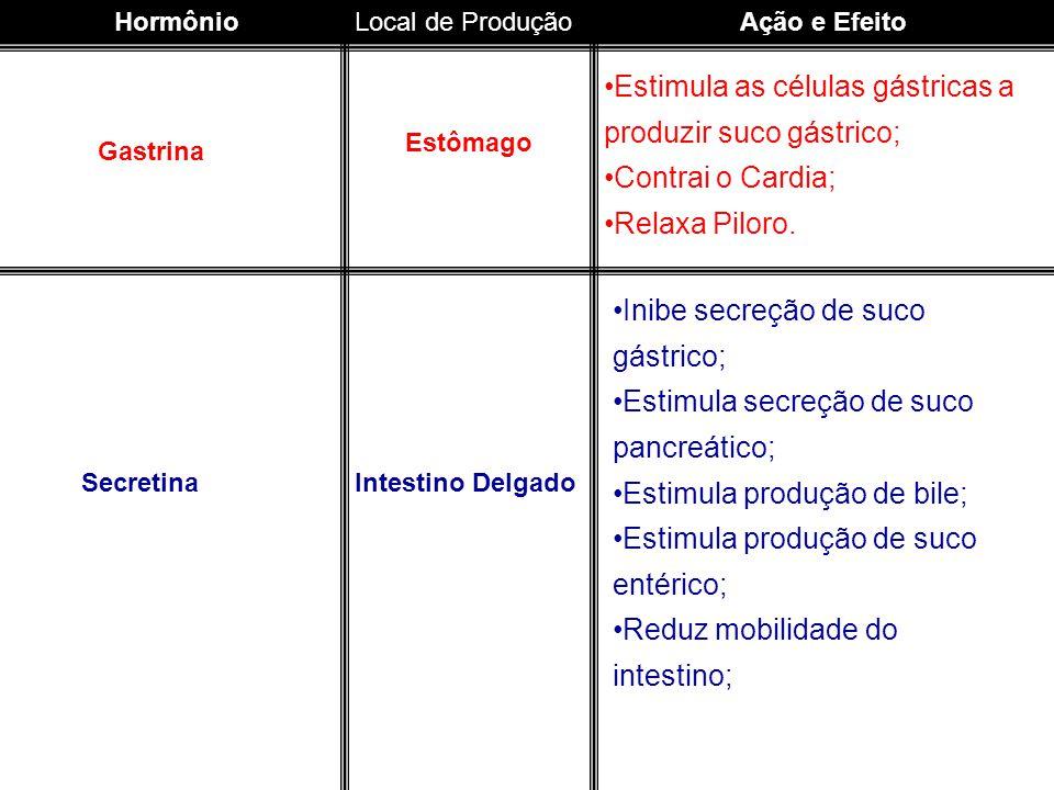 HormônioLocal de ProduçãoAção e Efeito Gastrina Estômago Estimula as células gástricas a produzir suco gástrico; Contrai o Cardia; Relaxa Piloro. Secr